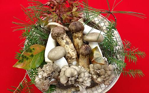 焼き松茸の画像