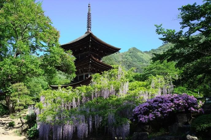 前山寺の画像