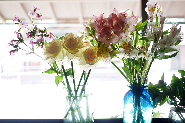 八重咲きスイセン*アルストロメリアの写真