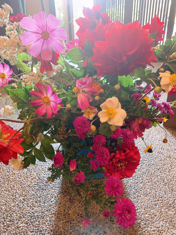 本日の花材💐の写真